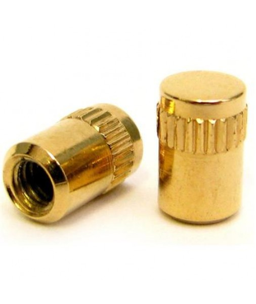 Gretsch Gold Switch Tips Set of Two 9221041000