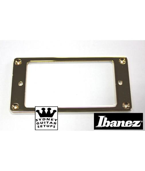 IBANEZ pickup ring humbucker Flat gold EBSK-PringG