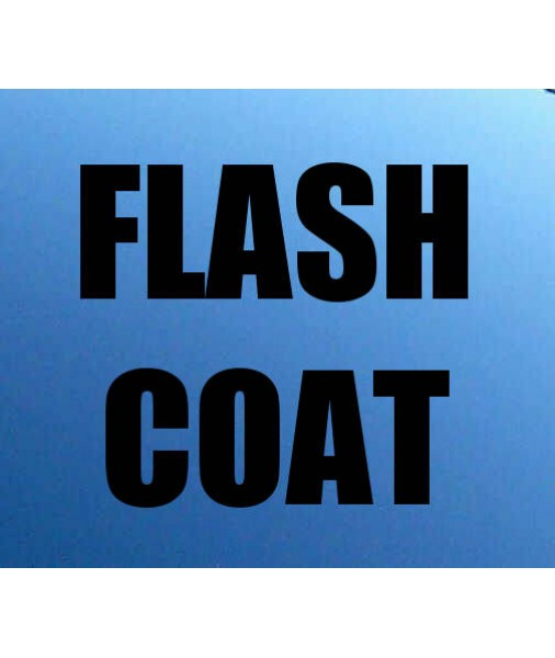 Flash Coat Wicked Witch  20% 75% 5% FLASH
